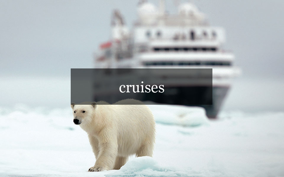 Ariana Wong Luxury Travel Cruises Image