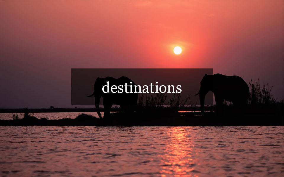 Ariana Wong Travel Advisor Destinations